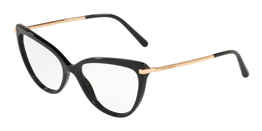 Dolce & Gabbana DG3295 501