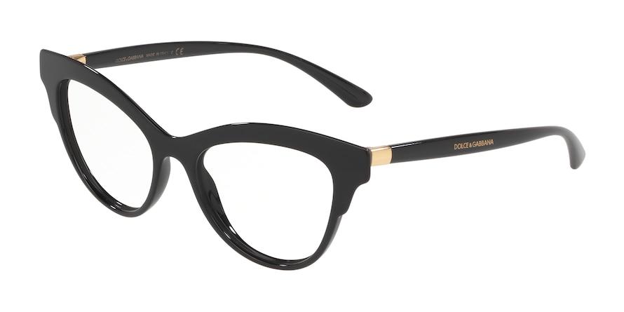 Dolce & Gabbana DG3313 501