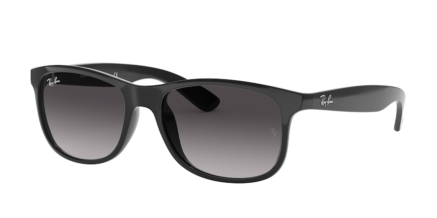 Ray Ban RB4202 601/8G Andy