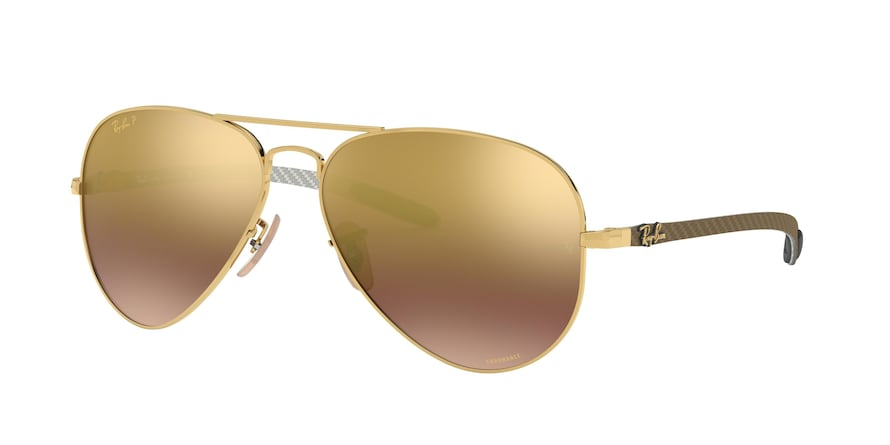 Ray Ban RB8317CH 001/6B