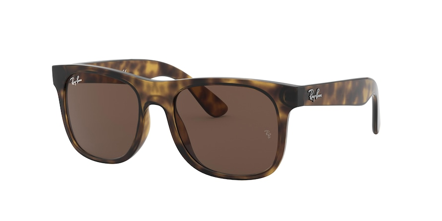 Ray Ban Junior RJ9069S 152/73